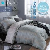 Minis 100%純天絲40支 床包兩用被套四件組 雙人 一碟思念