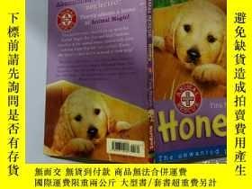 二手書博民逛書店Animal罕見Rescue Honey:動物拯救蜂蜜Y200392