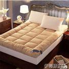 床墊加厚羽絨棉床墊10cm酒店榻榻米床褥...