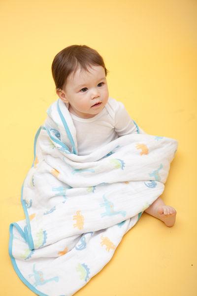 美國Angel Dear Muslin Napping 三層厚純棉細布嬰兒毛毯 男生貓頭鷹