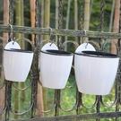 壁掛式懶人水培吸水花盆(3入組) 裝飾家居盆栽【KF07005】