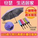 U05【遇水開花 黑膠 自動傘】晴雨兩用 抗UV八骨 防嗮自動傘 摺疊傘 折疊傘 開收雨傘 抗風 防雨