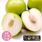 沁甜果園SSN.特選蜜棗5台斤/箱,(共2箱)﹍愛食網
