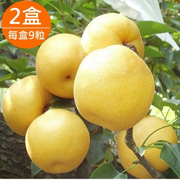 【樂品食尚】苗栗大湖新興梨9粒2盒(460g±10%/粒)