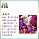 【綠藝家】H42.香豌豆(混合色)種子1...