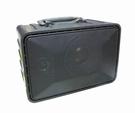 舞林高手 HC-801 (鋰電版) ,附音源線,充電式80W大喇叭,擴音機,跳舞機,保固一年