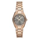 ARMANI 奢華晶鑽品味鋼帶女錶 AR6030