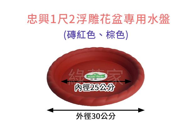 【綠藝家】忠興1尺2浮雕花盆專用水盤(只有磚紅色、棕色)