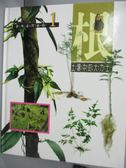 【書寶二手書T9/少年童書_XBC】根-土壤中的大力士_彭鏡毅