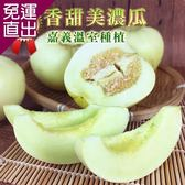 彩水果 嘉義溫室頂級激甜美濃瓜-1箱(5斤/箱)【免運直出】