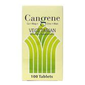 秉新 健鈣加強錠100粒 素食鈣(原康群)