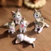 起司貓擺件甜甜私房貓模型貓小奇chi 可愛貓咪玩偶桌面公仔手辦 快速出貨