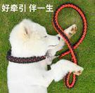 狗狗牽引繩狗鍊子中型大型犬狗繩金毛拉布拉多遛狗繩P鍊項圈 凱斯盾數位3c