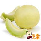 【果之家】台南七股白雪蜜世界洋香瓜哈蜜瓜10台斤(約4-6顆)