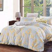 ✰雙人 薄床包兩用被四件組✰ 100%純天絲《格蕾》