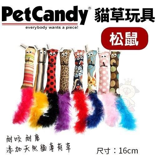 *KING WANG*PetCandy貓草玩具-松鼠.添加貓薄荷草 耐咬 耐磨.貓玩具.隨機出貨不挑款