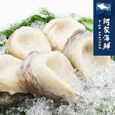 生凍智利大鮑魚 180g±10%/單顆(規4/6) 鮑魚 比罐頭美味 燉湯 熬粥 南美洲急速冷凍 快速出貨