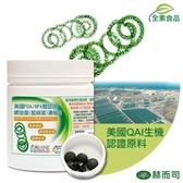 【赫而司】美國ONS全素食高單位400mg螺旋藻/藍綠藻錠(500顆/罐)