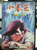 挖寶二手片-Y29-014-正版DVD-動畫【小拳王 光榮之戰 劇場版】-日語發音