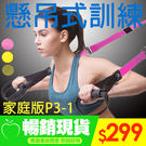 特價★Hank百貨★ 懸掛式 訓練帶 家庭版P3-1 組合運動 核心肌群TRX健身不可調整 【TT0013】
