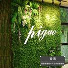 仿真植物 仿真植物墻綠植墻面草皮室內墻壁裝飾綠色草坪塑料假花形象背景墻-凡屋