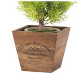 木製盆栽套 18×18×16 NITORI宜得利家居