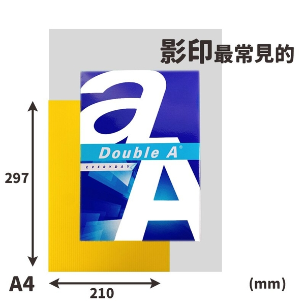 A4 塑膠瓦楞板 單色 /一包10張入(定100) 3mm PP板 中空板 防疫隔板 PP塑膠板 -萬