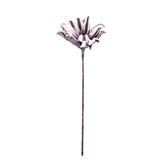 Flora芙蘿拉花插 芍藥 紫