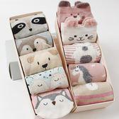 襪子禮盒 5雙裝禮盒襪 襪子女中筒襪棉質可愛襪甜美韓版
