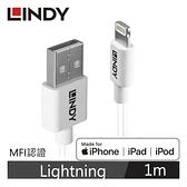 LINDY林帝 APPLE認證USB TYPE-A TO LIGHTNING 傳輸線 1M