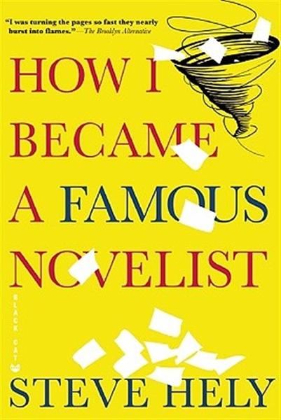 (二手書)How I Became a Famous Novelist