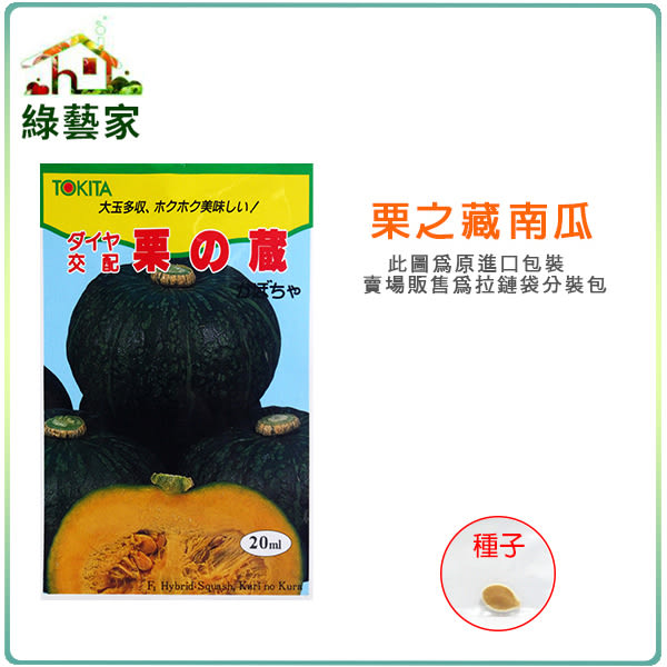 【綠藝家】G47.栗子南瓜種子1顆(栗の藏)