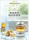 小熊養生壺家用多功能加厚玻璃煮茶壺辦公室花茶壺煮茶器電燒水壺 lx 夏季上新