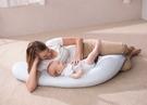 奇哥 好孕媽咪授乳枕 (藍/粉)