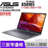 華碩 ASUS X509FJ-0111G8265U 灰【送128G SSD/i5 8265U/15.6吋/MX230/四核/Full-HD/intel/筆電/Buy3c奇展】似 X509FB