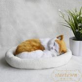 網紅仿真玩偶公仔會呼吸的假貓咪毛絨玩具模型可愛【繁星小鎮】