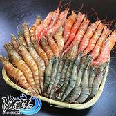 【蝦爆豪華套餐】精巧肥豬蝦+天使紅蝦+海草蝦(約46尾)