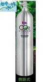 {台中水族} 台灣LE-230  鋁合金CO2鋁瓶-3L(側路式)  特價 二氧化碳 水草缸用
