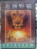 影音專賣店-G10-032-正版DVD*電影【非洲野貓(迪士尼)】旁白:山繆傑克森