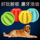 狗狗玩具橡膠彈力球耐咬玩具訓練寵物玩具【南風小舖】