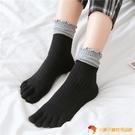 5雙裝 五指襪女純棉秋冬高腰拼色中筒堆堆襪【小獅子】