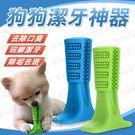 【M號】狗狗潔牙神器 磨牙玩具 狗牙刷 狗潔牙 寵物牙刷 寵物潔牙 潔牙玩具 除口臭玩具