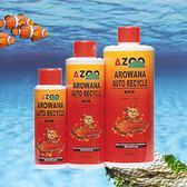 AZOO 龍泉菌 3800ml