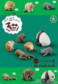 扭蛋 TOMY多美扭蛋 休眠動物園5 治癒系躺睡動物第五彈 熊貓 二度3C