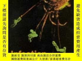 二手書博民逛書店Infection罕見And Immunity-感染與免疫Y436638 John Playfair Oxfo