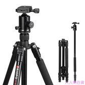 F91單反照相機三腳架 微單攝影攝像便攜鋁合金三角架手機支架