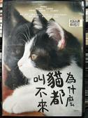 挖寶二手片-P07-395-正版DVD-日片【為什麼貓都叫不來】-風間俊介 松岡茉優 鶴野剛士
