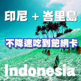 5天印尼網卡不降速吃到飽/峇里島網卡/巴里島網卡/巴裡島網卡/巴里島上網卡