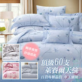 60天絲床罩組~ 頂級60支100%天絲加大雙人床罩七件式組/多種款式任選60S