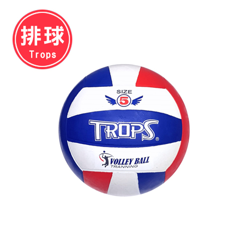 TROPS 5號彩色排球